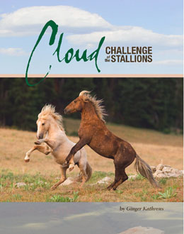 cloud_challenge_stallions book cover